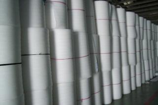 Non Cross-Link Polyethylene